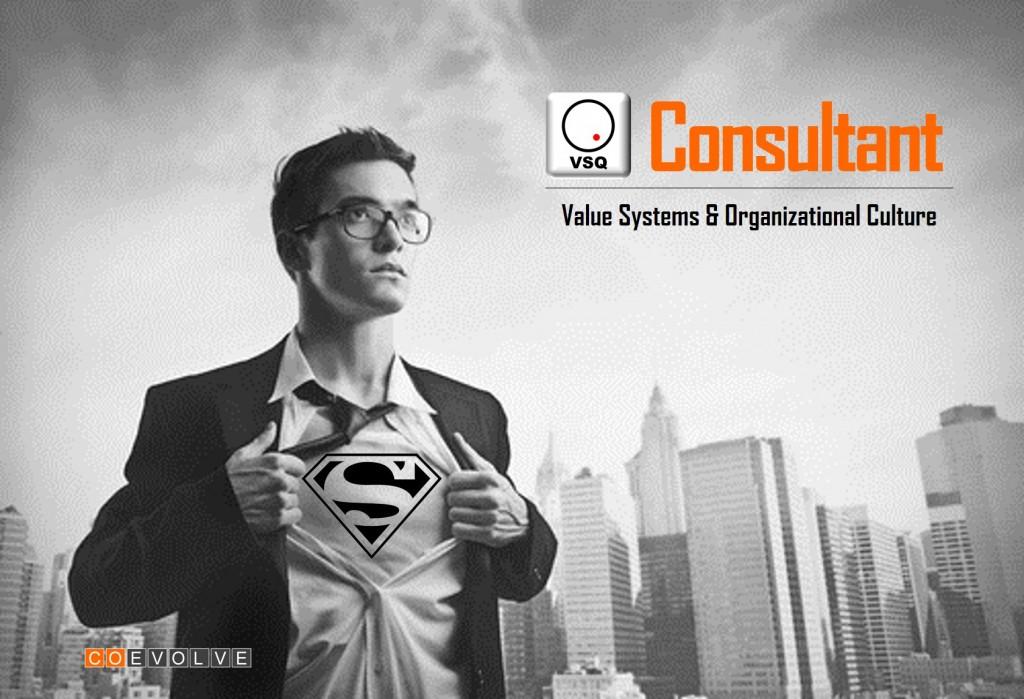 VSQ Consultant image